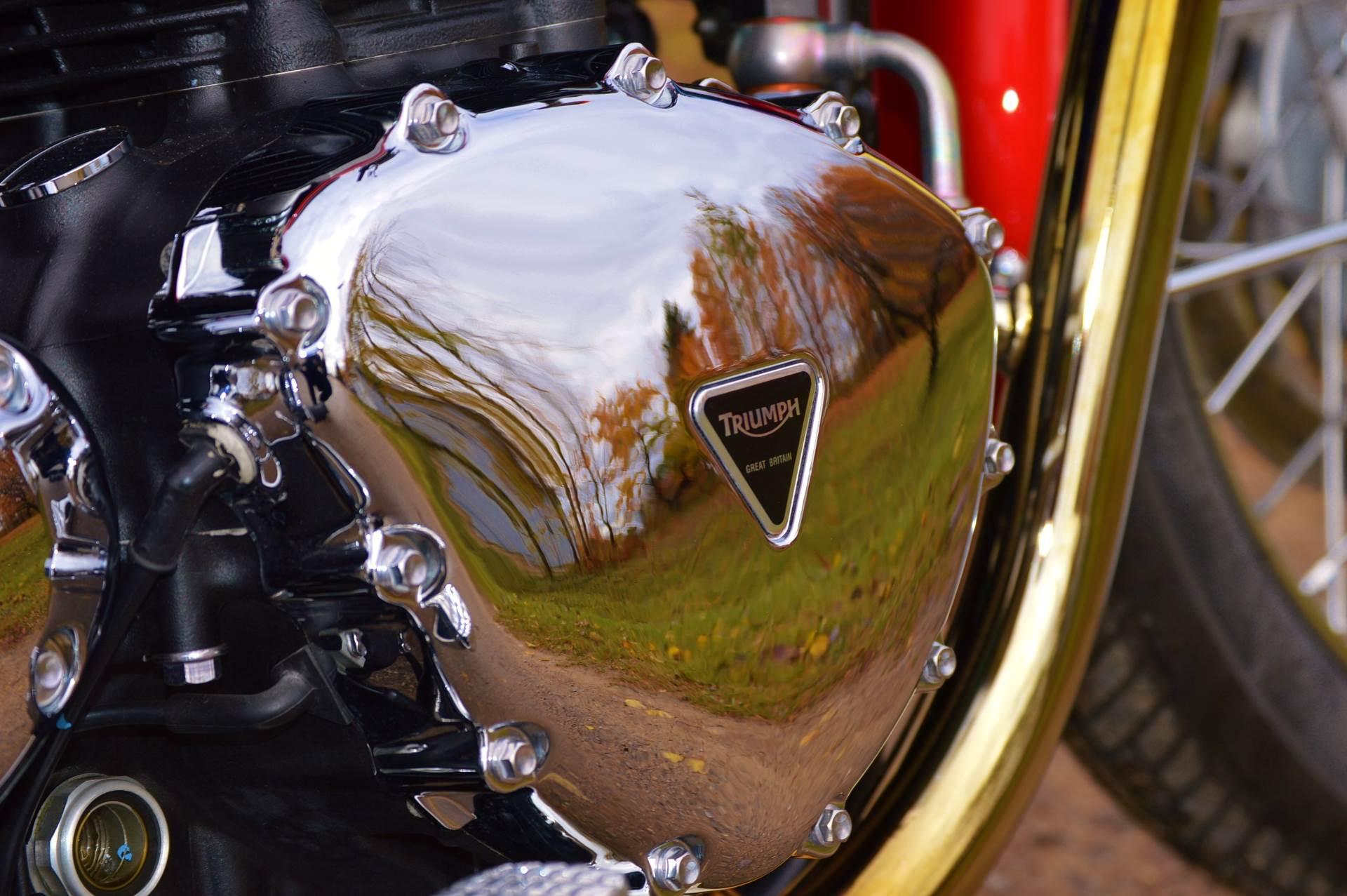 2013 Triumph Bonneville T100 in Traverse City, Michigan