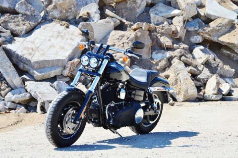 2014 Harley-Davidson Dyna® Fat Bob® in Traverse City, Michigan