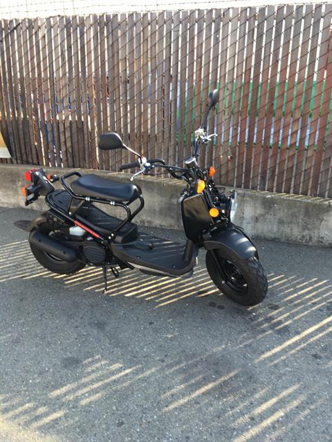 2014 Honda Ruckus® in Berkeley, California