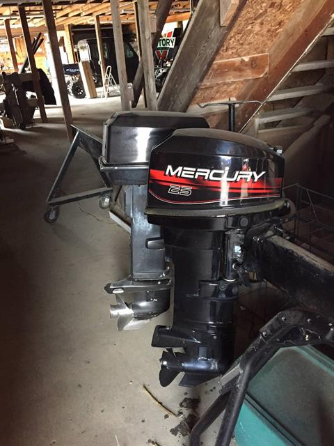 1998 Mercury Marine 25elh in Albert Lea, Minnesota