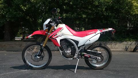 2013 Honda CRF®250L in Grass Valley, California