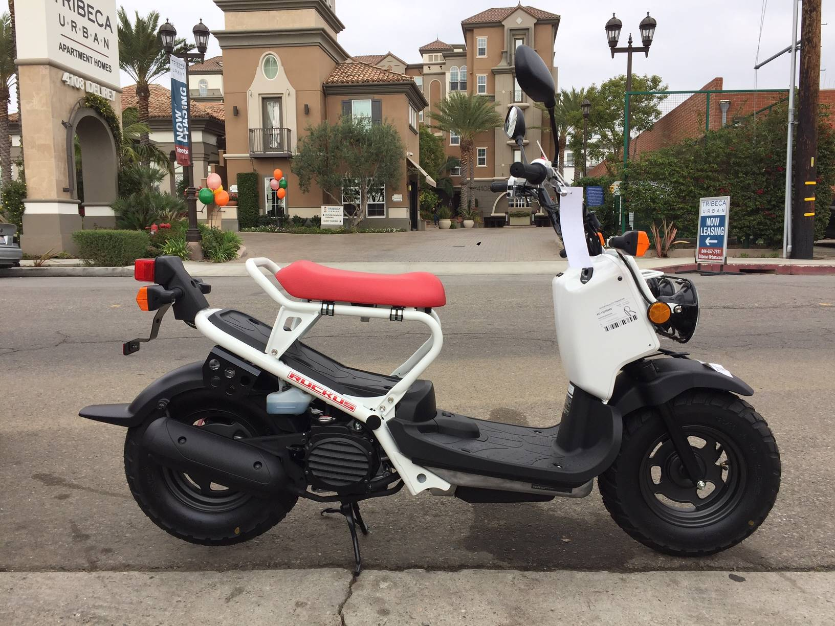 2019 Honda Ruckus in Marina Del Rey, California - Photo 1