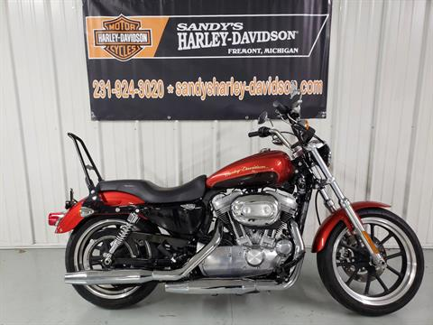 2013 Harley-Davidson Sportster® 883 SuperLow® in Fremont, Michigan - Photo 1