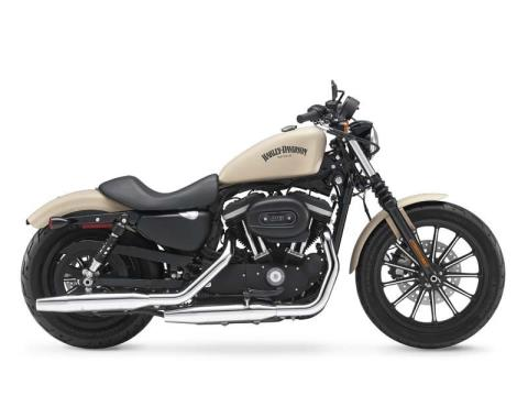 2014 Harley-Davidson Sportster® Iron 883™ in Fort Myers, Florida - Photo 2