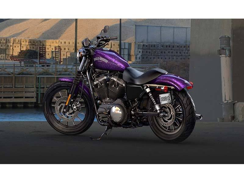 2014 Harley-Davidson Sportster® Iron 883™ in Fort Myers, Florida - Photo 6
