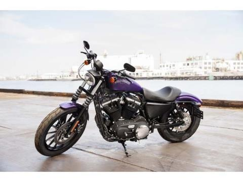2014 Harley-Davidson Sportster® Iron 883™ in Fort Myers, Florida - Photo 12