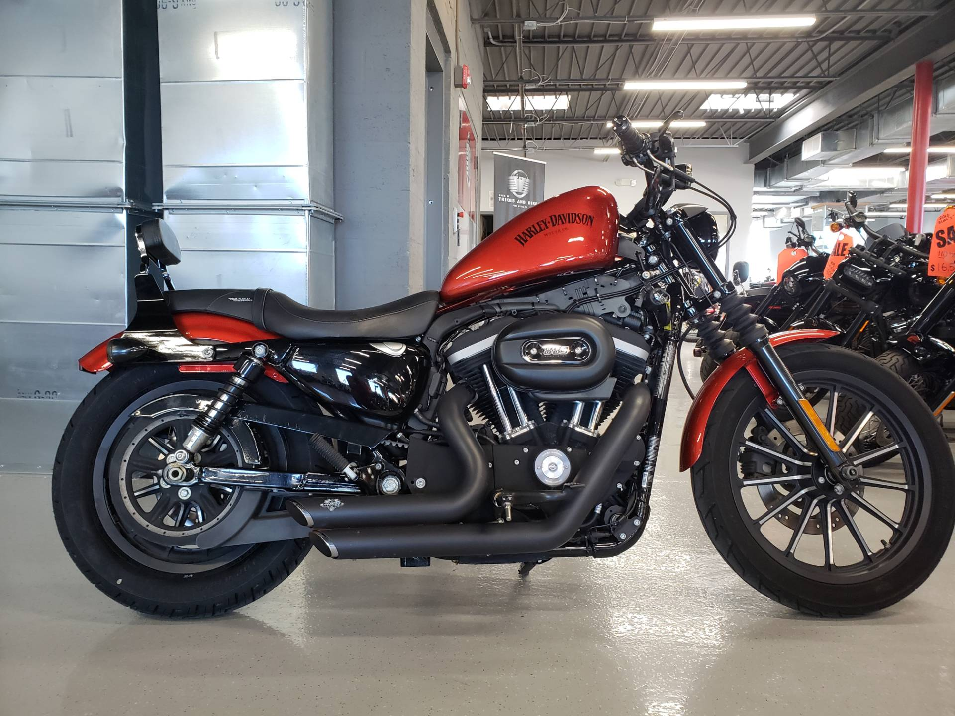 Used 2013 Harley Davidson Sportster Iron 883 Motorcycles In Fort