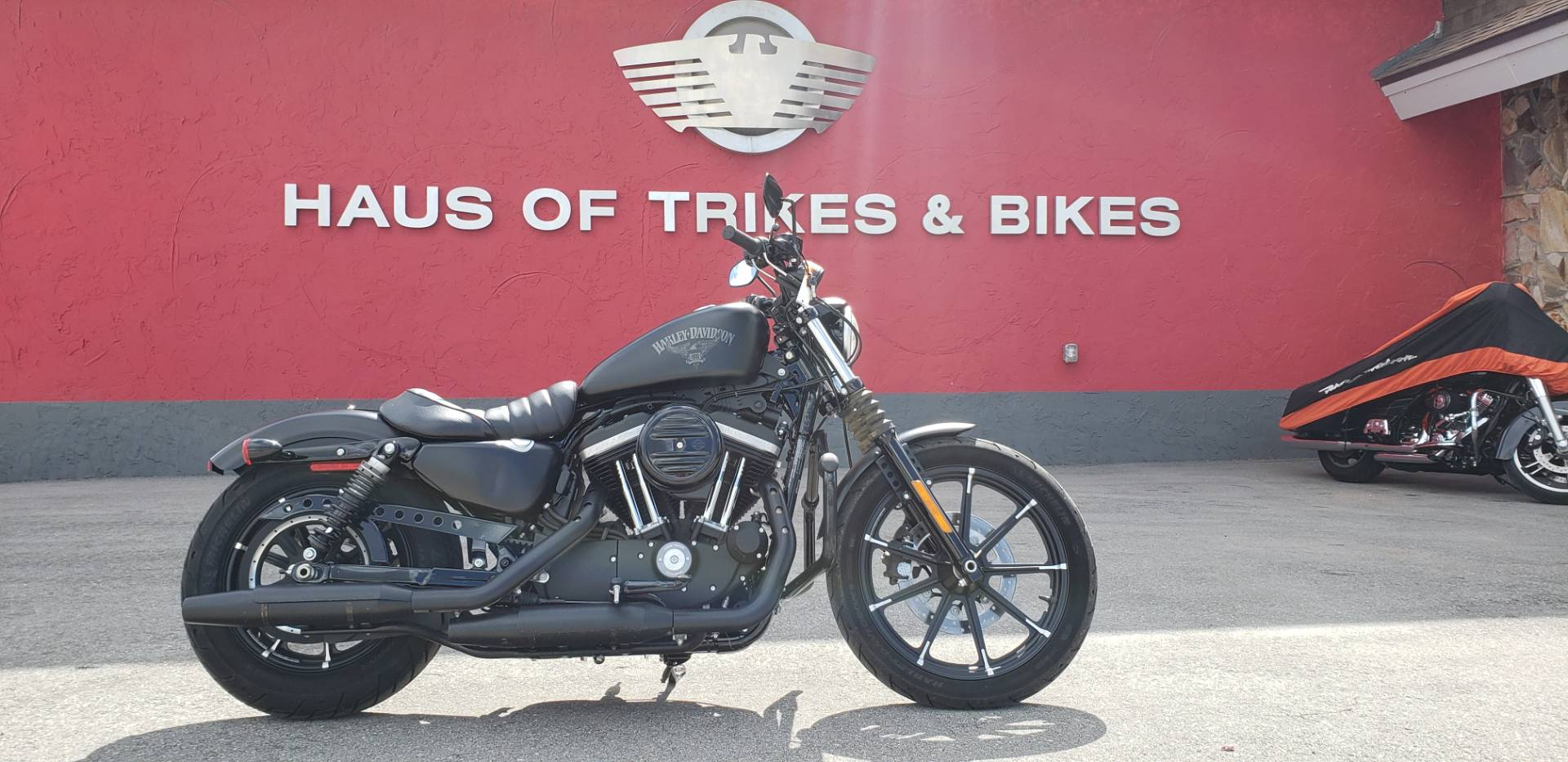 2017 Harley-Davidson Iron 883™ in Fort Myers, Florida - Photo 1