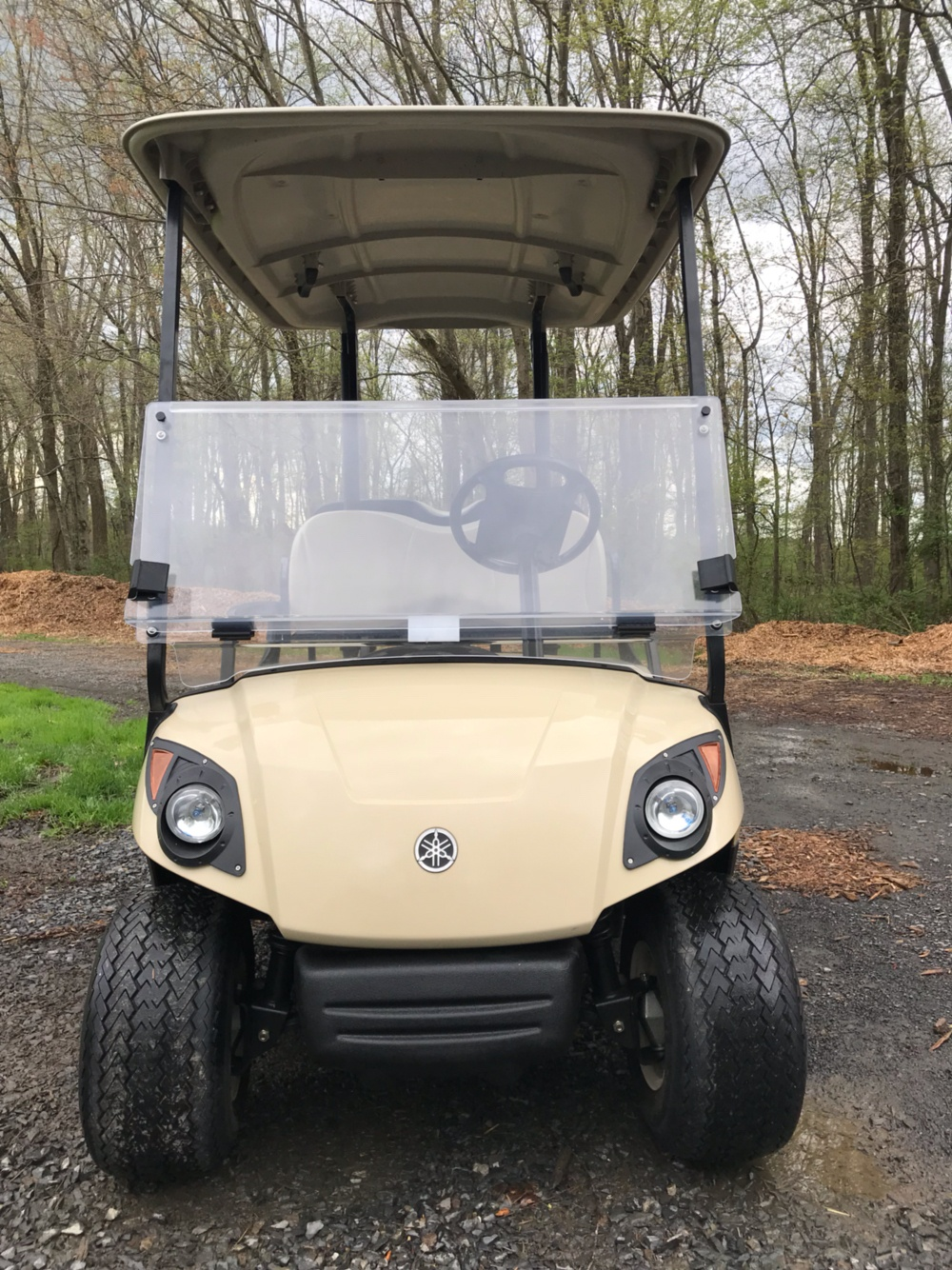 2016 Yamaha THE DRIVE Fleet (Electric) in Trevose, Pennsylvania - Photo 2