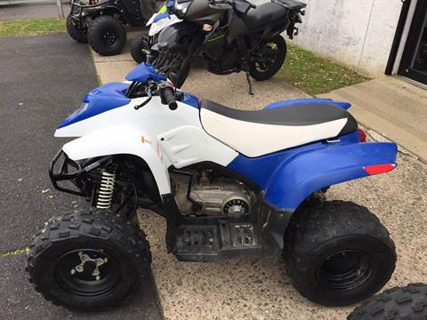2014 Polaris Phoenix™ 200 in Trevose, Pennsylvania