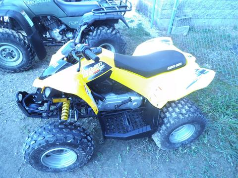 2014 Can-Am DS 90™ in Munising, Michigan