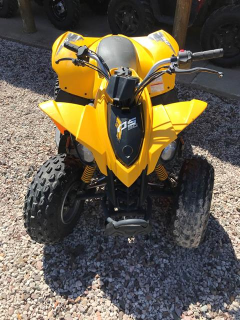 2014 Can-Am DS 90™ X® in Munising, Michigan - Photo 2