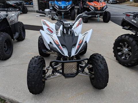 2010 Yamaha Raptor 250 in Mechanicsburg, Pennsylvania