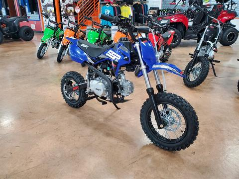 2021 SSR Motorsports SR110 in Evansville, Indiana - Photo 2