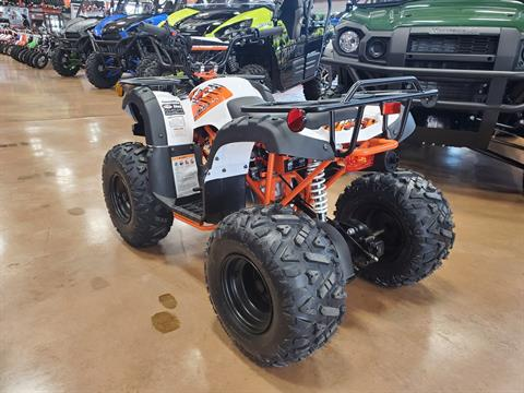 2021 Kayo Bull 125 in Evansville, Indiana - Photo 5