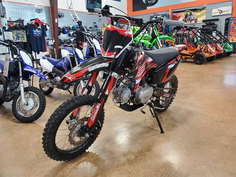 2021 SSR Motorsports SR110TR in Evansville, Indiana - Photo 4