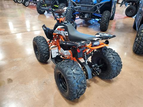 2020 Kayo Predator 125 in Evansville, Indiana - Photo 6
