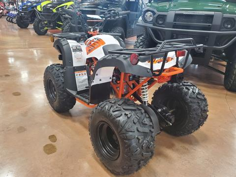 2020 Kayo Bull 125 in Evansville, Indiana - Photo 6