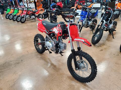 2021 SSR Motorsports SR125 in Evansville, Indiana - Photo 2