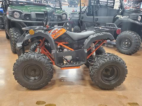 2020 Kayo Bull 125 in Evansville, Indiana - Photo 5