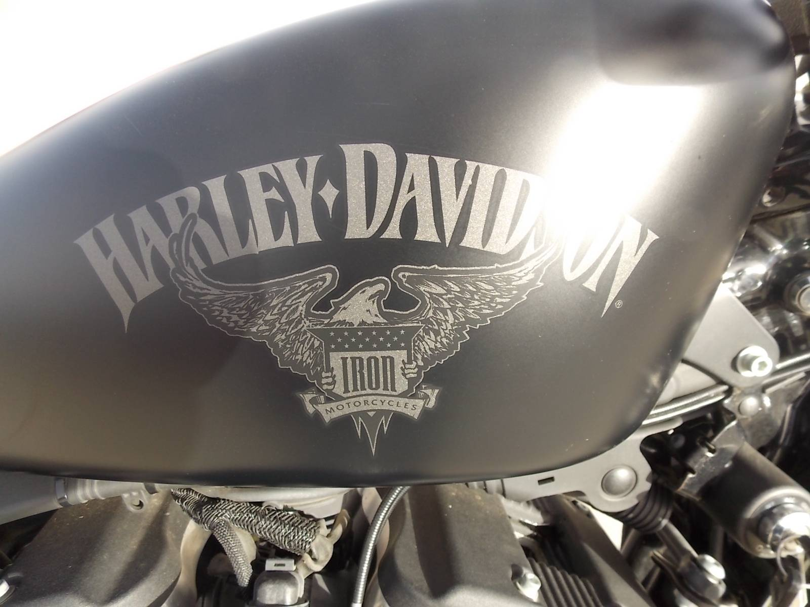2016 Harley-Davidson Iron 883™ in Springtown, Texas - Photo 5