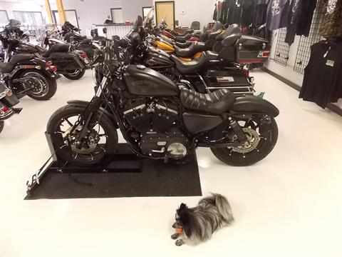 2016 Harley-Davidson Iron 883™ in Springtown, Texas - Photo 17