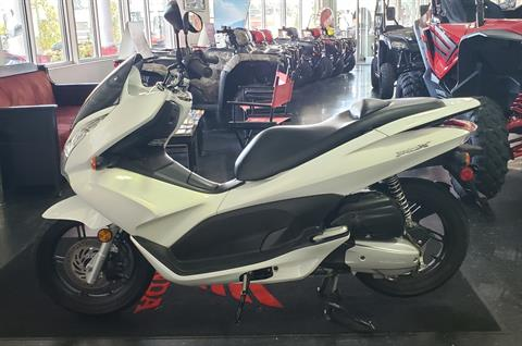 2011 Honda PCX™ in Chattanooga, Tennessee - Photo 3