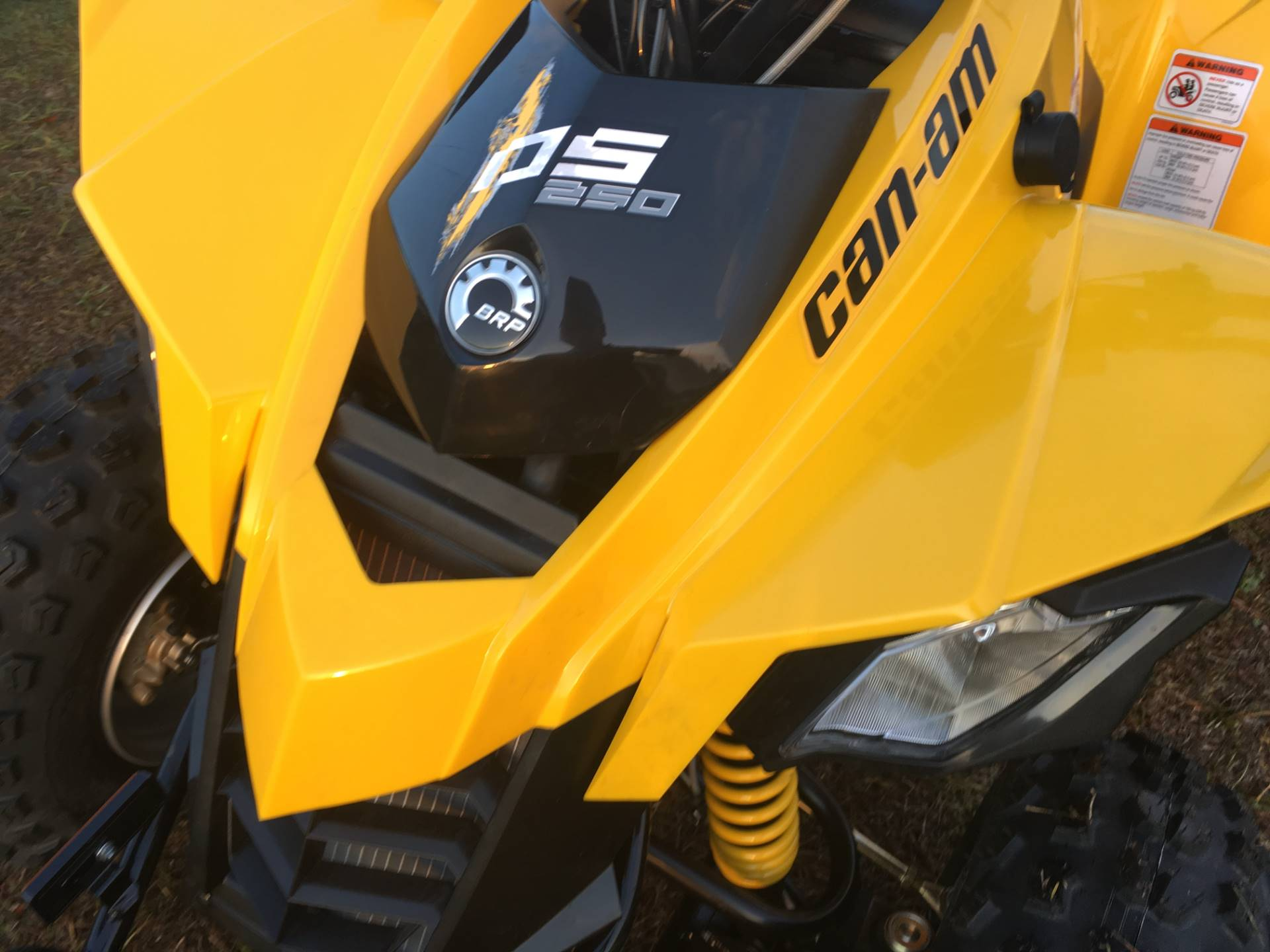 2018 Can-Am DS 250 in Douglas, Georgia
