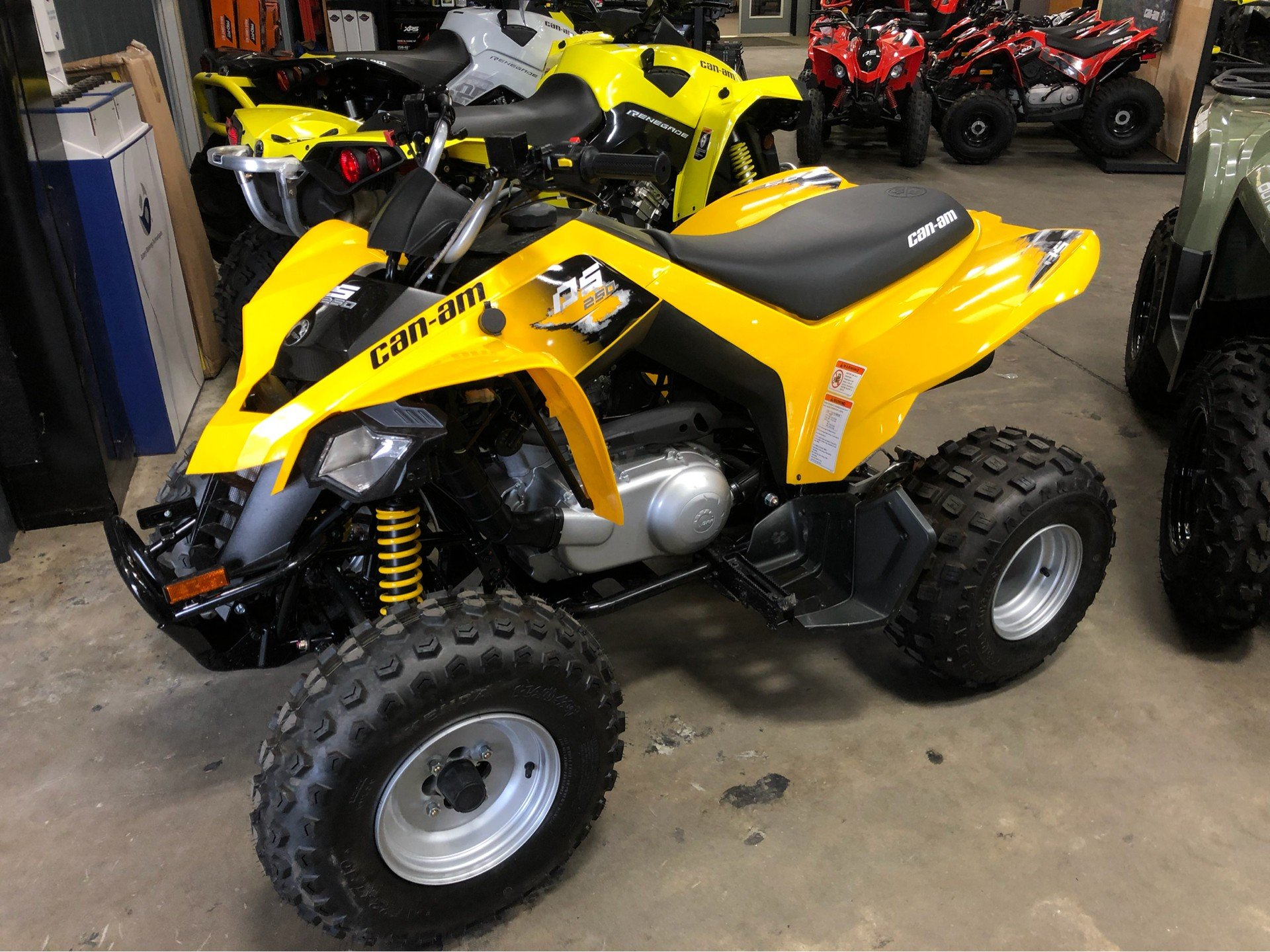 2019 Can-Am DS 250 in Douglas, Georgia - Photo 1