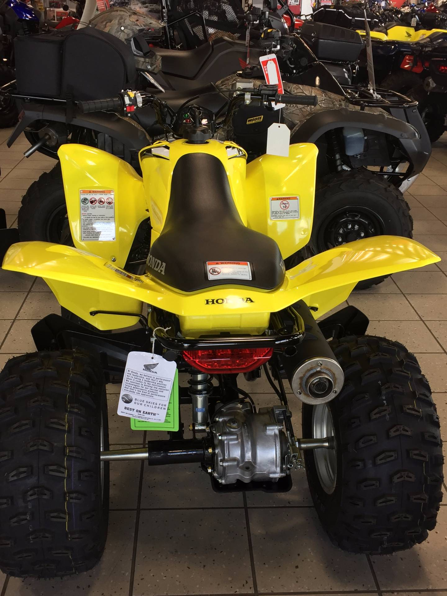 2018 Honda TRX250X in Troy, Ohio