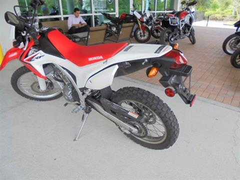 2014 Honda CRF®250L in Palm Bay, Florida