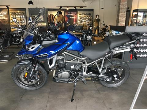 2017 Triumph Tiger Explorer XRT in Miami, Florida