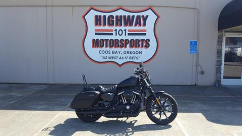 2020 Harley-Davidson Iron 883™ in Coos Bay, Oregon - Photo 1