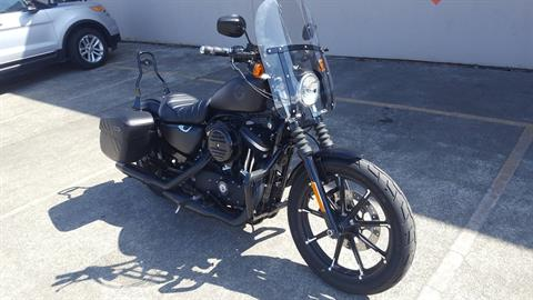 2020 Harley-Davidson Iron 883™ in Coos Bay, Oregon - Photo 3