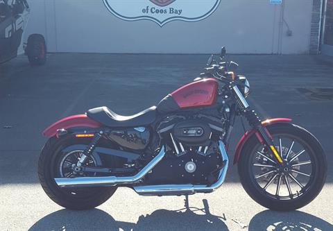 2013 Harley-Davidson Sportster® Iron 883™ in Coos Bay, Oregon - Photo 1