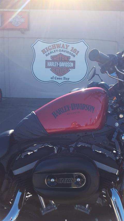 2013 Harley-Davidson Sportster® Iron 883™ in Coos Bay, Oregon - Photo 4