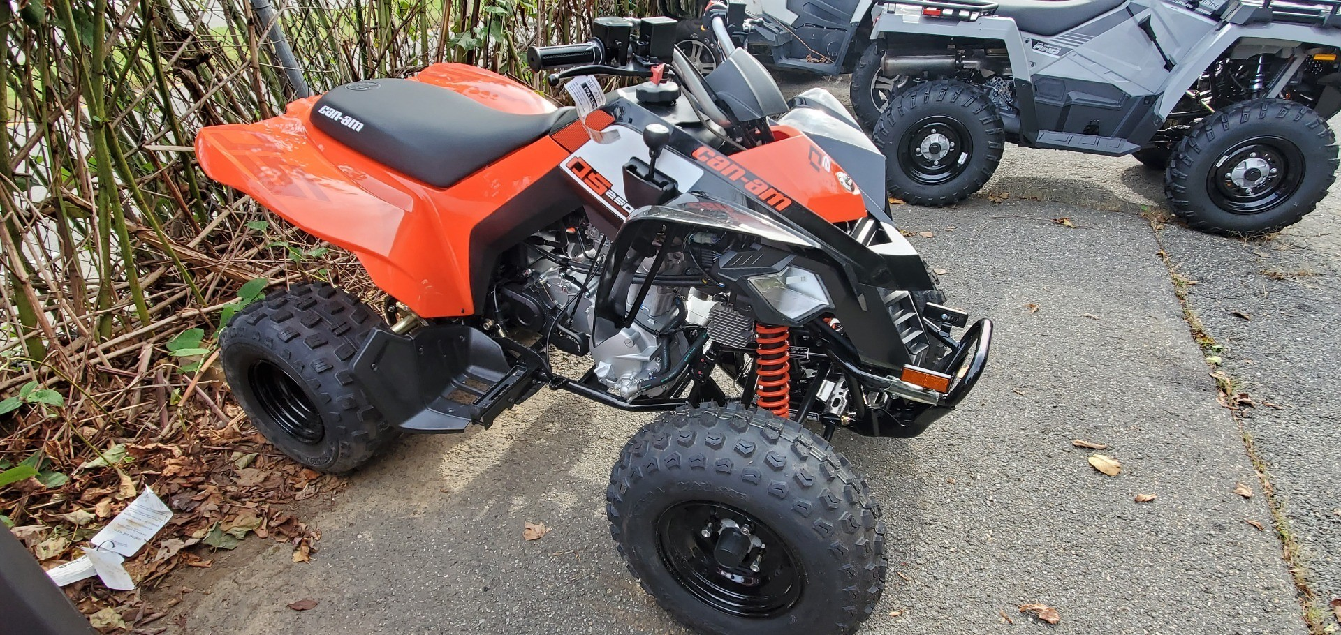 2020 Can-Am DS 250 in Ledgewood, New Jersey - Photo 5