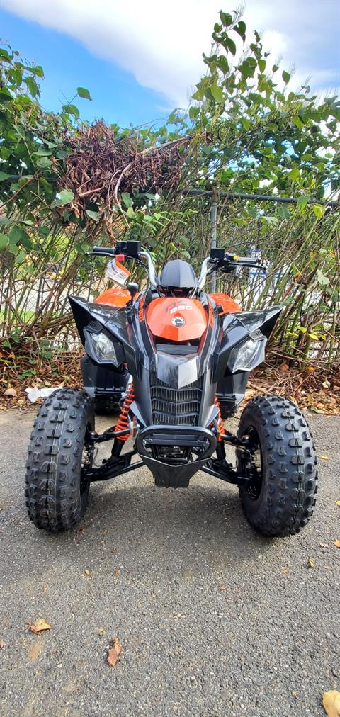 2020 Can-Am DS 250 in Ledgewood, New Jersey - Photo 3