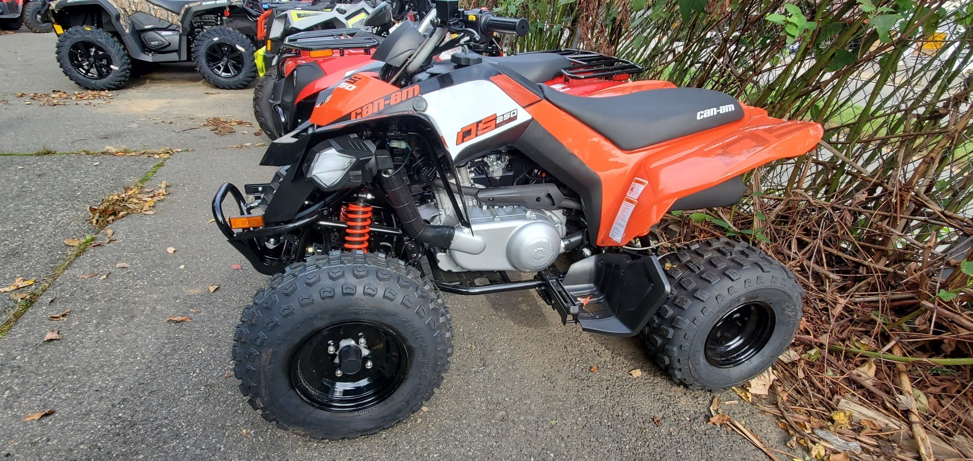 2020 Can-Am DS 250 in Ledgewood, New Jersey - Photo 6