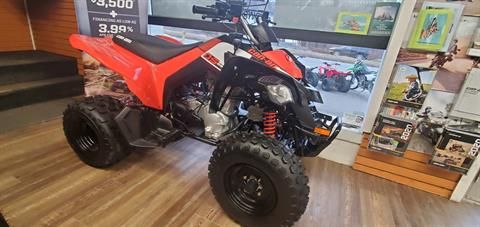 2020 Can-Am DS 250 in Ledgewood, New Jersey - Photo 1