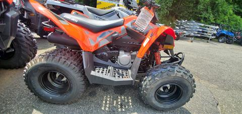 2019 Can-Am DS 90 in Ledgewood, New Jersey - Photo 5