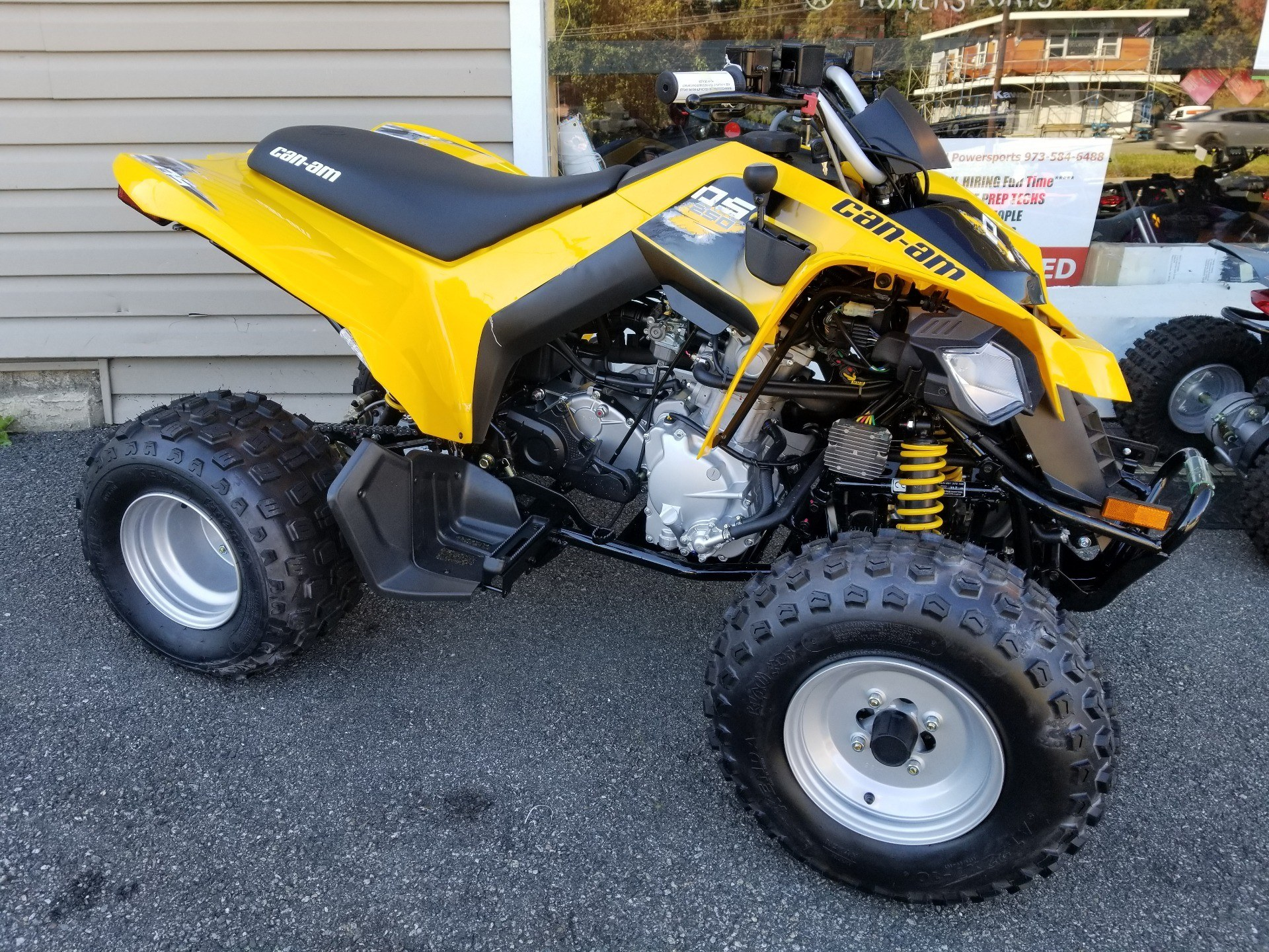 2019 Can-Am DS 250 for sale 9765