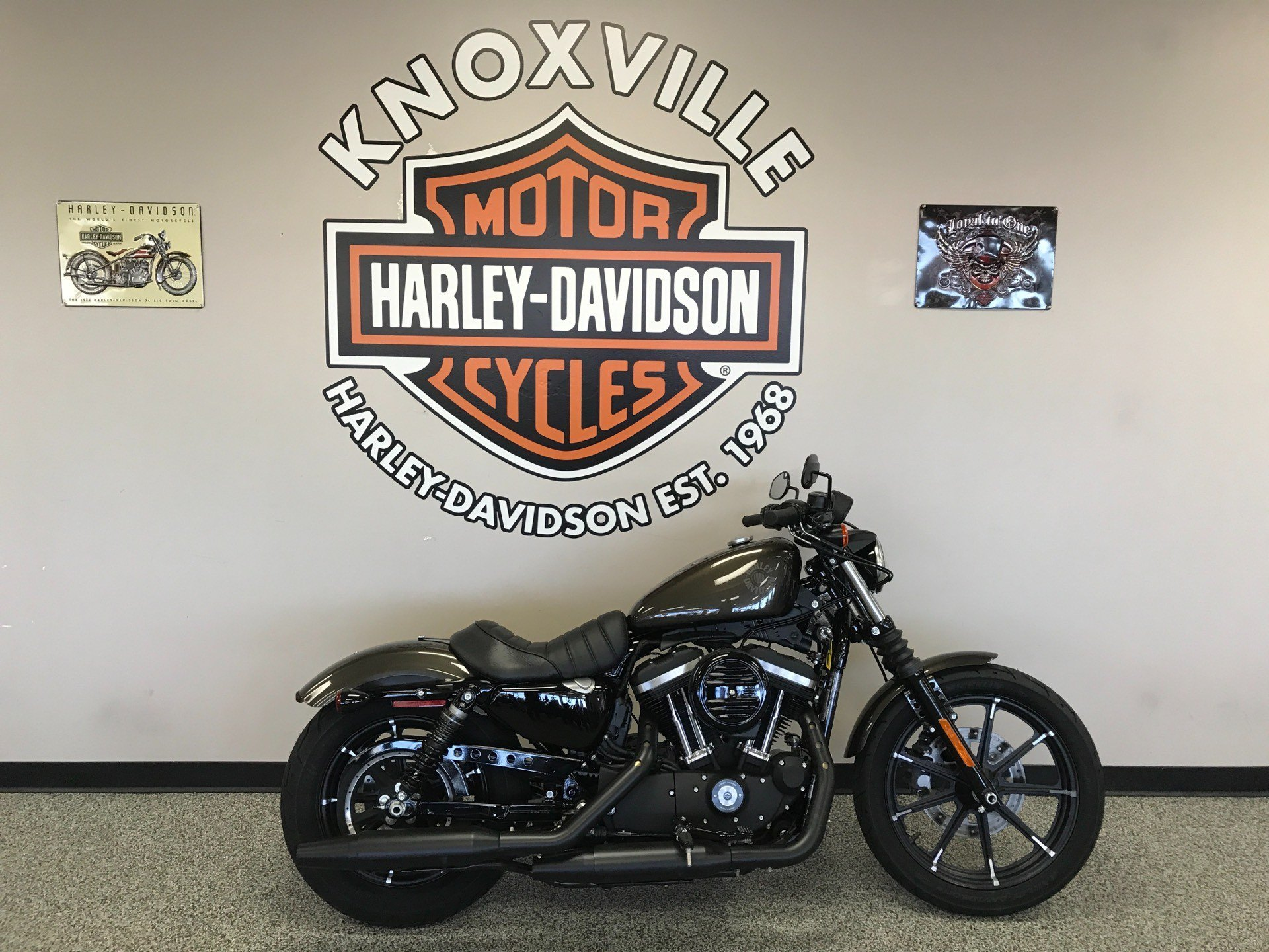 2020 Harley-Davidson Iron 883™ in Knoxville, Tennessee - Photo 1