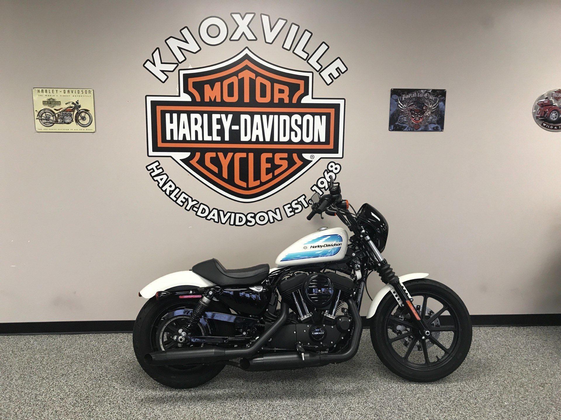 2018 Harley-Davidson XL1200N in Knoxville, Tennessee - Photo 1