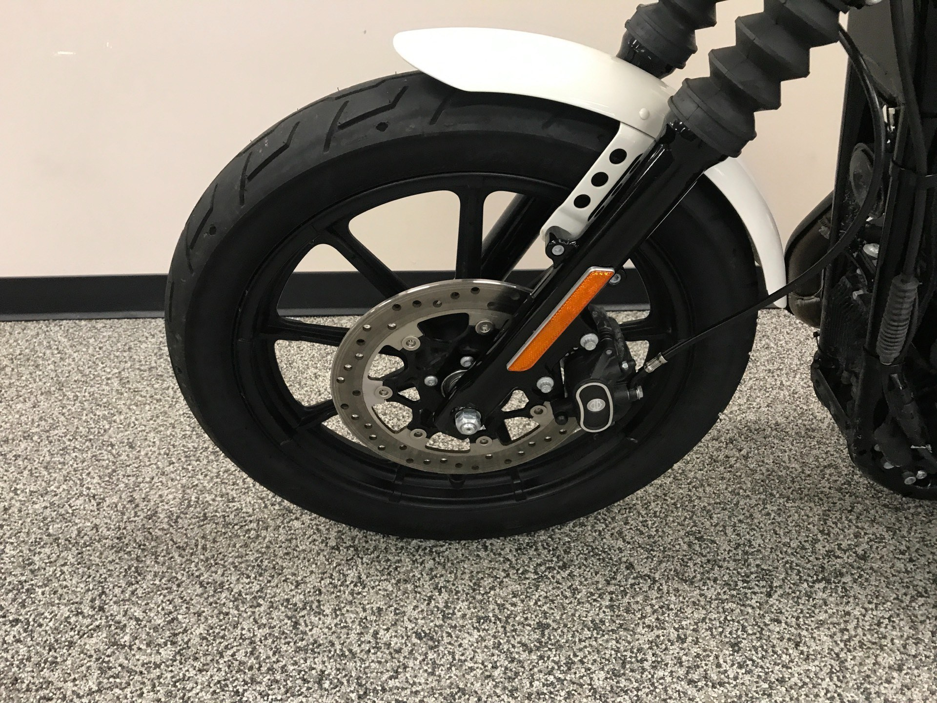 2018 Harley-Davidson XL1200N in Knoxville, Tennessee - Photo 16