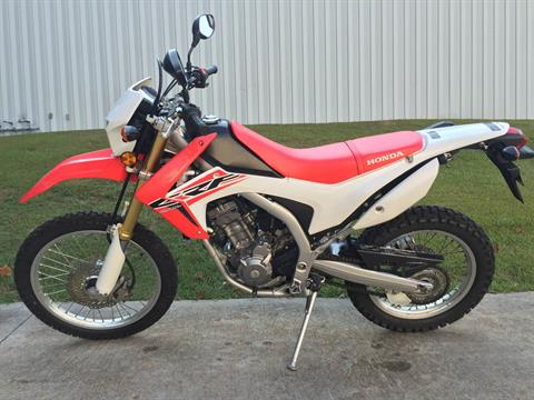 2015 Honda CRF®250L in Fayetteville, Georgia - Photo 12