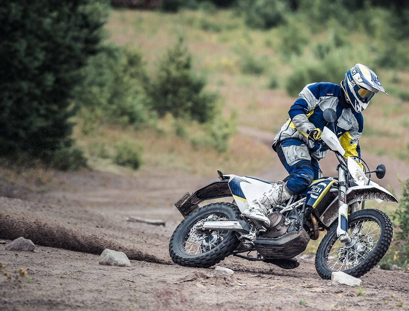 2016 Husqvarna 701 Enduro for sale 7287