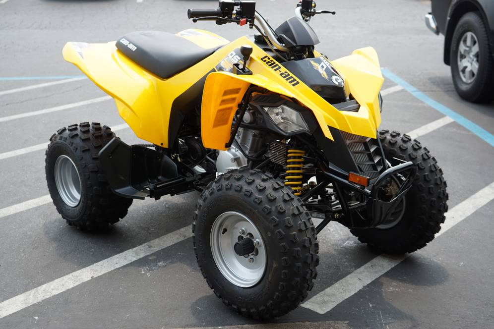New 2019 Can-Am DS 250 ATVs in Elk Grove, CA | Stock Number: CAN024517