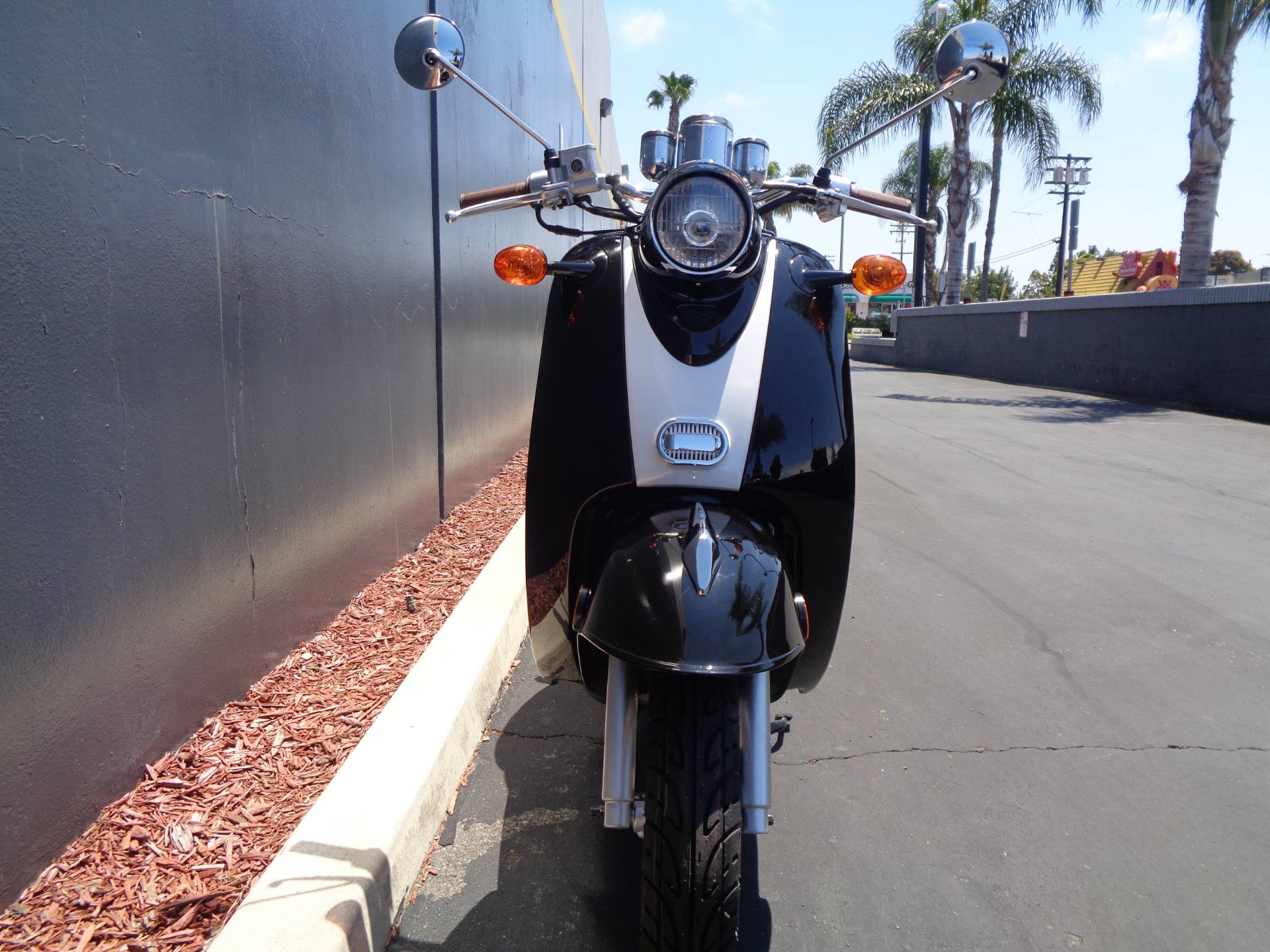 2019 Wolf Brand Scooters Wolf Islander in Chula Vista, California - Photo 13