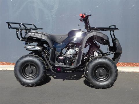 2017 Coolster ATV-3125R in Chula Vista, California